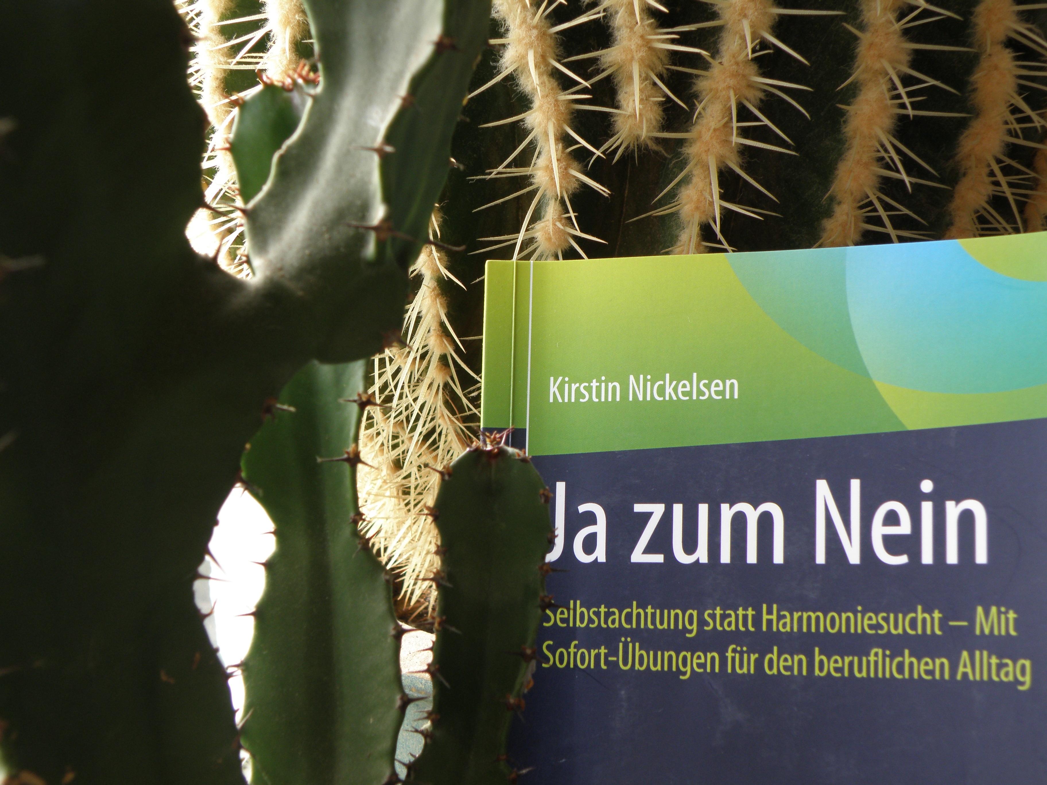 Das Buch Ja zum Nein