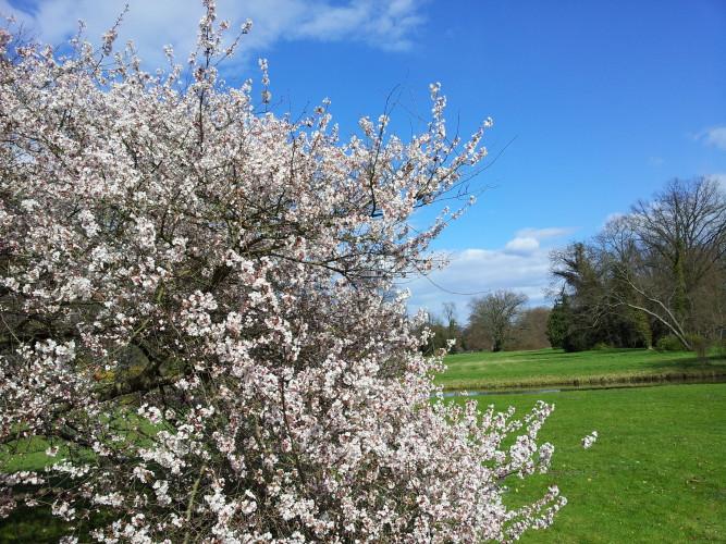 Ostern! Frühling! Zeit für Kunsthandwerkermärkte