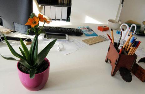 Büro Texthandwerkerin, Text Pulheim, Autorencoaching, Texthandwerkerin Pulheim, Text Rhein-Erft-Kreis
